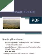 Peisaje Rurale