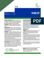 Microsoft PowerPoint - RAMICAR