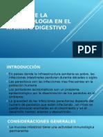 Efecto de La Parasitologia en El Aparato Digestivo