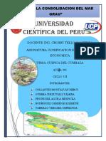 INFORME N° 01 COMPATIBILIDAD DEL TRAZO DE LA CARRETERA SAN ANTONIO DE CUMBAZA