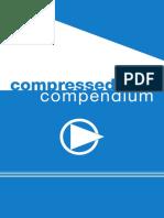 Compressed Air Compendium