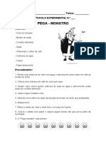 Protocolo Experimental -Pega Monstro