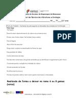 Ficha de trabalho  Sistemas de Poda segundo a unidade de frutificação.docx