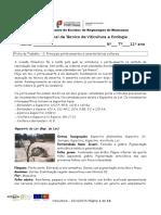 Ficha 2 Caracterização dos principais porta enxertos.docx