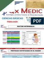 CIENCIAS BASICAS - fisiologia
