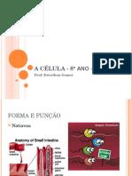 Aula CSM - Células e Tecidos