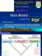 Aula CSM - Reino Monera (Completo)