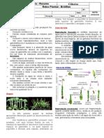 Aula Reino Plantae - Resumo Briófitas