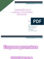 Empresa TIC Corregida