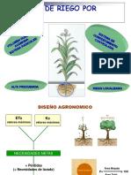 DISENO_AGRONOMICO_26.04.2013ppt.pdf