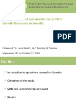 Improvement and Sustainable Use of Plant Genetic Resources in Somalia