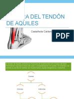 TyOTendón-Pseudoartrosis.pptx