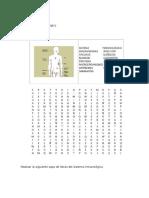 Sistema Inmunologico