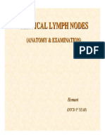 Lymph_Nodes.120182800
