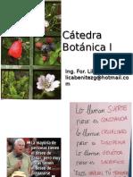 1.Clase.introduccion Botanica