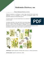 230 Plantas Medicinales Efectivas y Sus Usos