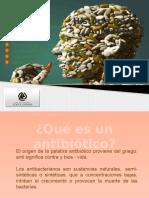 presentacinfinal-121118034809-phpapp02