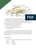 Deskripsi Ikan Nila