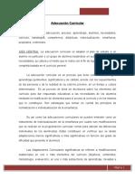 Ensayo_ Adecuaciones Curriculares