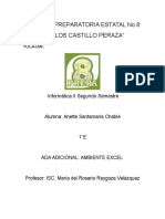 AmbienteExcel Anette Santamaria