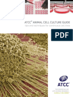 ATCC - Animal Cell Culture Guide (1).pdf