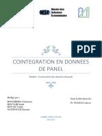 Rapport Cointegration Final (1)