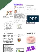 triptico-pap.doc