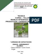 Manejo Integrado en La Produccion y Sanidad Del Arroz