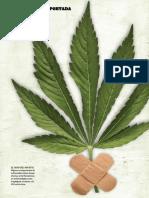 Luz verde. Marihuana como medicina