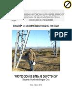 Curso Protecciones año 2015.pdf