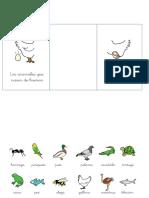 animalesoviparosyviviparos-160211200347