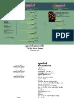 new%20-rays01.pdf