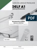 Exemple Sujet Delf Pro a1 Livret Candidat