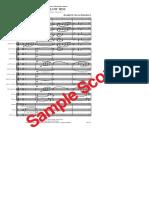 4645.pdf