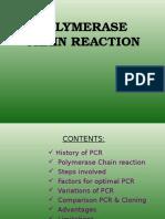 PCR_02.01.2017