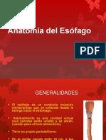 Anatomia del Esofago.pptx