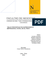 Ejemplo de Proyecto Final (1) busines.doc