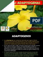 Conferencia Plantas Adaptogenas Syba 2015