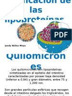 clasificacindelaslipoprotenas