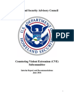 HSAC CVE Final Interim Report June 9 2016 508 compliant.pdf
