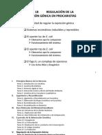 TEMA 18 REGULACIÓN DE LA EXPRESIÓN GÉNICA EN PROCARIOTAS(4).pdf
