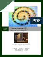 Guía Específica de La Práctica Optativa