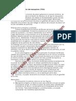 Elproblemaeconómicodelmasoquismo-1924.doc
