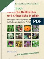 Praxisbuch Westliche Heilkraeuter Und Chinesische Medizin Auszug_2010!12!14