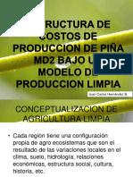 Biblioteca_277_Estructura de Costos de Producción de Piña MD2
