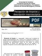Recepción de Biopsias y Descricpción Macroscópica