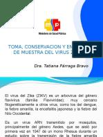 zika.ppt