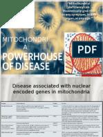 Mitochondrial Disease