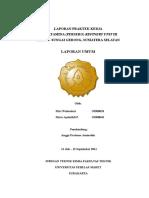 86819046-Laporan-Umum-RU-III-Plaju-2011.docx