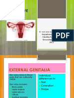 Female Reproductive Anatomy translete.pdf